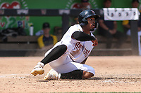 Wisconsin Timber Rattlers outfielder Joe Gray, Jr. (6) slides into home during a game against the South Bend Cubs on July 21, 2021 at Neuroscience Group Field at Fox Cities Stadium in Grand Chute, Wisconsin.  (Brad Krause/Four Seam Images)