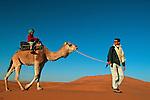Randonnée chamelière dans les dunes de l'erg Chebbi au sud de Rissani. Jean Lou en selle, Gabriel guide le chameau Grand sud marocain. Maroc