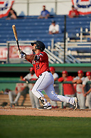 Batavia Muckdogs Michael Hernandez (29) bats during a NY-Penn League game against the Auburn Doubledays on June 19, 2019 at Dwyer Stadium in Batavia, New York.  Auburn defeated Batavia 5-0 in the second game of a doubleheader.  (Mike Janes/Four Seam Images)