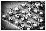 """Café in St Marks Square, San Marco, Venice, Italy. Piazza San Marco, is the principal public square of Venice, where it is generally known just as """"the Piazza"""". All other urban spaces in the city are called """"campi""""."""