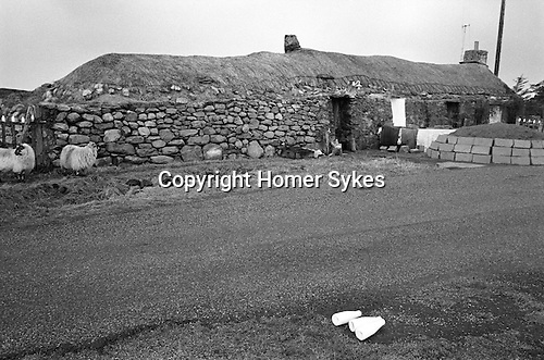 Milk delivery across the road from a traditional thatched stone  longhouse, Callanish, Isle of Lewis and Harris,   Outer Hebrides, Highland and Islands Scotland 1974