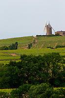 wind mill vineyard moulin a vent beaujolais burgundy france