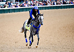 LOUISVILLE, KY - MAY 03: Mohaymen, trained by Kiaran McLaughlin and owned by Shadwell Stable, exercises and prepares during morning workouts for the Kentucky Derby and Kentucky Oaks at Churchill Downs on May 3, 2016 in Louisville, Kentucky. (Photo by John Voorhees/Eclipse Sportswire/Getty Images)