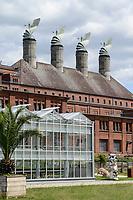 GERMANY, Berlin, Tilapia fish farm of start up ECF, the fish farm is combined with green houses to cultivate vegetables irrigated with sewage water from the fish ponds / DEUTSCHLAND, Berlin, Tilapia Gemuese- und Fischfarm des start-up Unternehmens ECF auf dem Gelaende der ehemaligen Schultheiss Malzfabrik, mit dem naehrstoffhaltigem Abwasser der Fischtanks wird Basilikum im Gewaechshaus bewaessert, Aquaponic System, als Hauptstadt Barsch werden Fisch und Basilikum in Berlin ueber Rewe und Metro lokal vermarket, Hintergrund Schornsteine der alten Malzfabrik