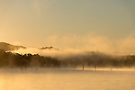Misty sunrise on Lake Tinaroo.