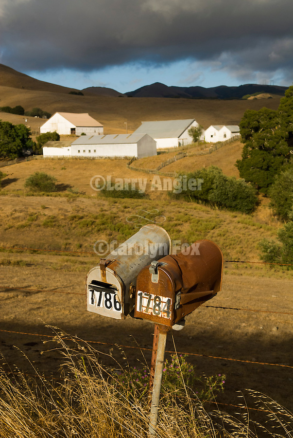 Mail boxes, white barns and sheds in the foothills of the Gabilan Range, near San Juan Bautista, Calif...(part of the historic Spanish land grant-Los Vergeles)