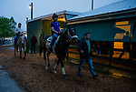 BALTIMORE, MD - MAY 18: Bravazo walks back to the barn followed by trainer, D. Wayne Lukas after completing preparations for the Preakness Stakes at Pimlico Racecourse on May 18, 2018 in Baltimore, Maryland. (Photo by Alex Evers/Eclipse Sportswire/Getty Images)