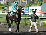 October 2, 2010.Zneyatta riden by Mike Smith going into the gate before winning  The Lady's Secret Stakes at Hollywood Park, Inglewood, CA._Cynthia Lum/Eclipse Sportswire.com