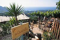 """Europe/France/Corse/2B/Haute-Corse/Balagne/Pigna: Détail de la terrasse du café bar à vin """"Casarella"""""""
