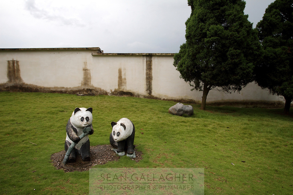 Statues of pandas at the Anhui Research Center for Alligator Reproduction. Only 120 individuals remain in the wild in China as a result of wetlands reclamation. Xuancheng City, Anhui Province. China. 2010