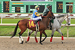 January 16, 2016: Treaty Oak with Miguel Mena up in the Marie G. Krantz Memorial Stakes race at the Fairground race course in New Orleans Louisiana. Steve Dalmado/ESW/CSM