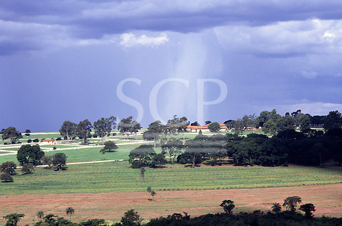 Parana State, Brazil. Typical ranch (fazenda) farmland from the south with trees.
