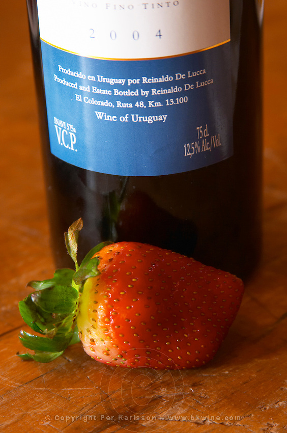A bottle of R de Lucca Tannat Vino de El Colorado 2004 and a strawberry. Supposedly Tannat goes well with strawberries. Bodega De Lucca Winery, El Colorado, Progreso, Uruguay, South America