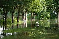 Zufahrt am Campingplatz der Naturfreunde in Stockstadt am Erfelder Altrhein - Suedhessen 15.07.2021: Hochwasser am Rhein des sueshessischen Ried