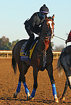 Authentic, trained by trainer Bob Baffert, exercises in preparation for the Breeders' Cup Classic at Keeneland Racetrack in Lexington, Kentucky on November 4, 2020.