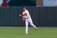 Springfield Cardinals right fielder Conner Capel (12) during a Texas League game against the Amarillo Sod Poodles on April 25, 2019 at Hammons Field in Springfield, Missouri. Springfield defeated Amarillo 8-0. (Zachary Lucy/Four Seam Images)