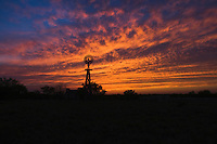 Wind mill at sunset, Rio Grande Valley, Texas, USA