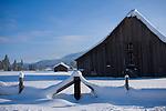 Idaho, Blanchard. A winter landscape featuring the  landmark barn at the corner of Blanchard Road and Hwy 41 in North Idaho.