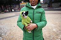 China - Chongqing [2008]