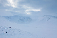 Walkers ascending onto Fiachaill a' Choire Chais from Coire an t-Sneachda, Cairngorm National Park, Badenoch & Speyside