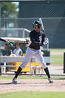 Chicago White Sox outfielder Anderson Comas (17) at bat during an Instructional League game against the Oakland Athletics at Lew Wolff Training Complex on October 5, 2018 in Mesa, Arizona. (Zachary Lucy/Four Seam Images)