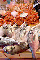 Fresh Sea Food & Fish - Bream - Chioggia - Venice Italy