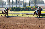 ARCADIA, CA  JULY 5:  #5 Gamine, ridden by John Velazquez, left the field in her wake in the stretch of the Great Lady M Stakes (Grade ll) on July 5, 2021 at Los Alamitos Race Course in Los Alamitos, CA.  (Photo by Casey Pnillips/ Eclipse Sportswire/ CSM)