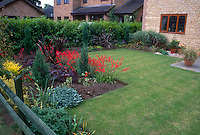 Tidy backyard with sharp-edged perennial beds, lawn grass, shrub hedge for privacy, stone house, patio with container garden pots. Wooden fence, red heuchera in bloom, Phormium spiky plants, evergreens, lambs ears, mixed plantings of foliage and flowers.