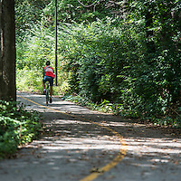STAFF PHOTO ANTHONY REYES • @NWATONYR<br /> A cyclist pedals along A section of the Oak Ridge Trail Monday, Aug. 11, 2014 near Center Street in Fayetteville.