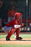 Los Angeles Angels of Anaheim Keinner Pina (8) during an Instructional League game against the San Francisco Giants on October 13, 2016 at the Tempe Diablo Stadium Complex in Tempe, Arizona.  (Mike Janes/Four Seam Images)