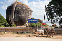 Myanmar, Burma.  Mingun, near Mandalay.  Ox-drawn Taxi Passing by the Rear of a Stone Sculpture facing the Ayeyarwady River.   Blue and white sign urges citizens to warmly welcome and take care of tourists.