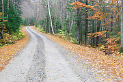 Tripoli Road in the New Hampshire White Mountains during the autumn foliage season. Completed in 1934, Tripoli Road for most of its length is an unpaved bumpy dirt road that connects Waterville Valley and Woodstock, New Hampshire. This is a seasonal road closed during the winter months.