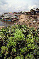 Along Musi River near Palembang, Indonesia, farmers stack their bananas for sale. Water taxis along river bank transport passengers as well as cargo. crops, transportation, fruit, agriculture. Bananas for sale. Palembang, Indonesia Musi River.