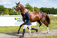 GBR-Isabel White presents Indian Girl G during the First Horse Inspection for the CCI-L2* Section D.  2019 GBR-Saracen Horse Feeds Houghton International Horse Trial. Wednesday 22 May. Copyright Photo: Libby Law Photography