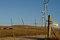 Spain, Andalusia, Cadiz, village La Zarzuela, cattle and wind farm
