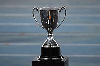 Rio de Janeiro (RJ), 01/08/2020 - Botafogo-Fluminense - Taça Gerson-Didi. Partida amistosa entre Botafogo e Fluminense, realizada no Estádio Nilton Santos (Engenhão), na zona norte do Rio de Janeiro,  neste sábado (01).