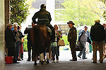 15 April 2011.  The outriders horses are popular with visitors young and old at the entrance to the tunnel at Keeneland Racecourse..