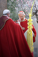Pope Francis Cardinal Piacenza during papal mass as part of the Palm Sunday celebration on St Peter's square at the Vatican.  on March 24, 2013