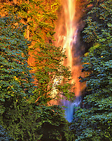 Evening light on the bae of Multnomah Falls in the Columbia River Gorge National Scenic Area, Oregon