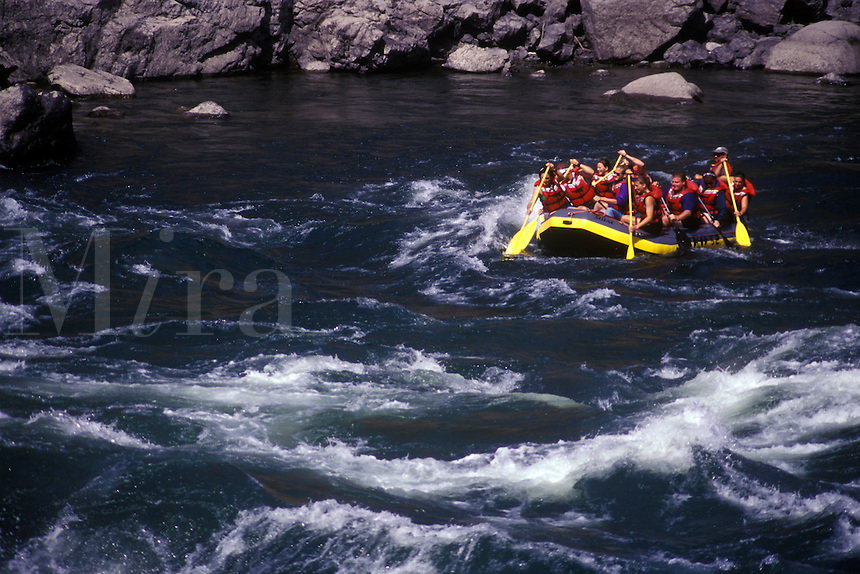 White water rafting on the Thompson river, BC, Canada