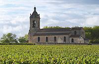 Vineyard and church. Chateau Margaux, Bordeaux, France