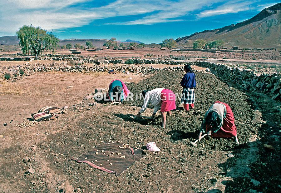 Mulheres colhendo batata em Potosí. Bolivia. 1998. Foto de Juca Martins.
