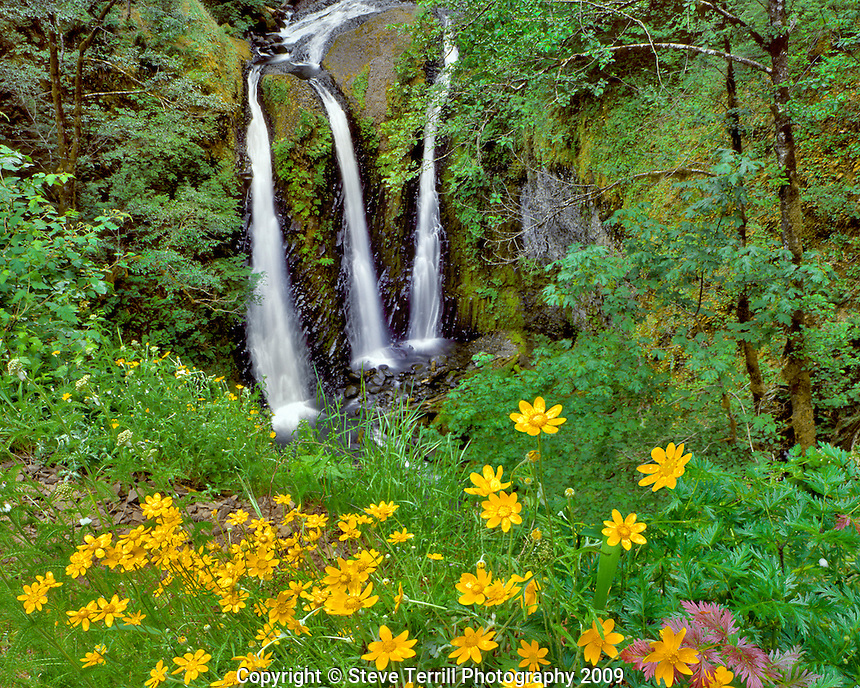 Triple Falls in Columbia River Gorge National Scenic Area Oregon