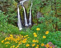 Triple Falls in Columbia River Gorge National Scenic Area Oregon