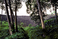 Pathway leading to Piilanihale Heiau, the largest luakini type (human sacrifice) heiau in Hawaii, Kahanu Garden, Hana