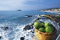 - Calabria, Cedar Coast, Diamante beach towards North, basket of cedars<br /> <br /> - Calabria, Costa dei cedri, la spiaggia di Diamante verso nord, cesto di cedri