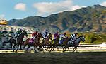 Racing action at at Santa Anita Park in Arcadia, California on December 26, 2012.