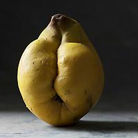 Gastronomie générale: Le coing fruit du cognassier:  Cydonia oblonga