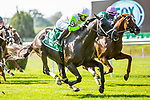 JULY 04, 2020 : Social Paranoia with Jose Ortiz aboard, wins the Grade 3 Poker Stakes, going 1 mile on the turf, at Belmont Park, Elmont, NY.  Sue Kawczynski/Eclipse Sportswire/CSM