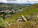 Our dog Bryce sitting on the top of the mountain looking down on the rapidly growing city of San Luis Obispo